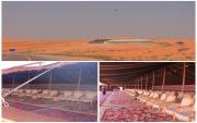 بلدية #جبة ومجلسها البلدي يدعونكم لحضور مخيم استقبال ضيوف وزوار ومتسابقي #رالي_حائل الدولي
