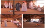 في ضريبين جماعة الصالح من الرمال من #جبة يحتفلون بضيوف وزوار #رالي_حائل